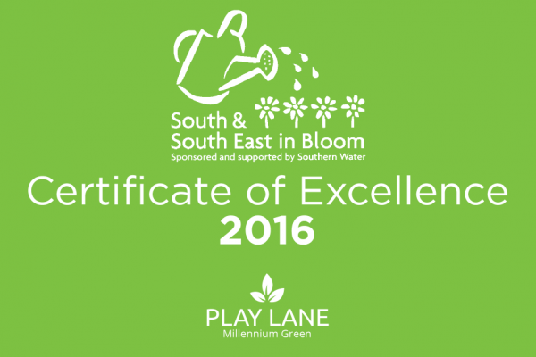 South & South East in Bloom Certificate of Excellence